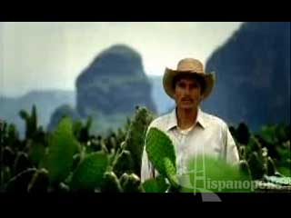 * De nuestra historia* de mi bandera* de mi gol* de mi esfuerzo* de mi tierra* de mi jefecita* de mis tradiciones* de no darme por vencido* de mi gente* de mi Selección* de mi obra maestra* de mi hija que se graduóOrgulloso de ser mexicano, orgullosa de ser mexicana...200 años orgullosamente mexicanosY tú, ¿de qué te sientes orgulloso? FESTEJEMOS EL BICENTENARIO 2010