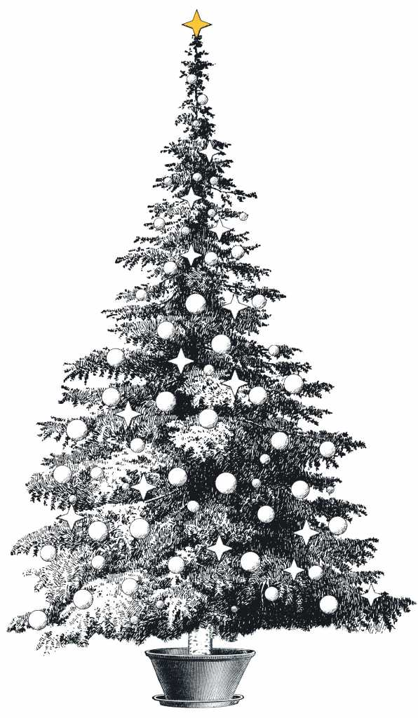 ¿Por qué los cristianos ponen arbolito en Navidad?