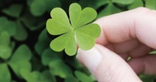 El arte de cultivar la buena suerte y atraer lo bueno